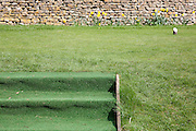 Synthetic grass steps with Daffodils leading to a tee at Lansdown Golf club near Bath adjacent to the Cotswold Way