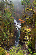 Side view of the Upper Little Qualicum Falls at Little Qualicum Falls Provincial Park in the Nanaimo Regional District, British Columbia, Canada