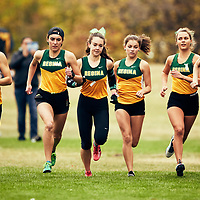 The Regina Cougars Cougar Trot on Sat Sep 15 at Wascana Park. Cougars pictured left to right; Robyn Ham, Kaila Neigum, Tianna Dodds, Kaylee Tymo, and Darbi Edwards Credit: Arthur Ward/Arthur Images