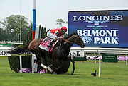 Celestine, ridden by Junior Alvarado, wins the 23rd running of the Longines Just A Game race, Saturday, June 11, 2016, at Belmont Park in Elmont, NY. Longines, the Swiss watchmaker known for its elegant timepieces, is the Official Watch and Timekeeper of the 148th running of the Belmont Stakes.(Diane Bondareff/AP Images for Longines)