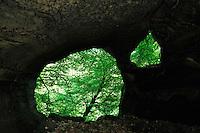 Wëlkesch-kummer - Small Cave, Mullerthal trail, Mullerthal, Luxembourg