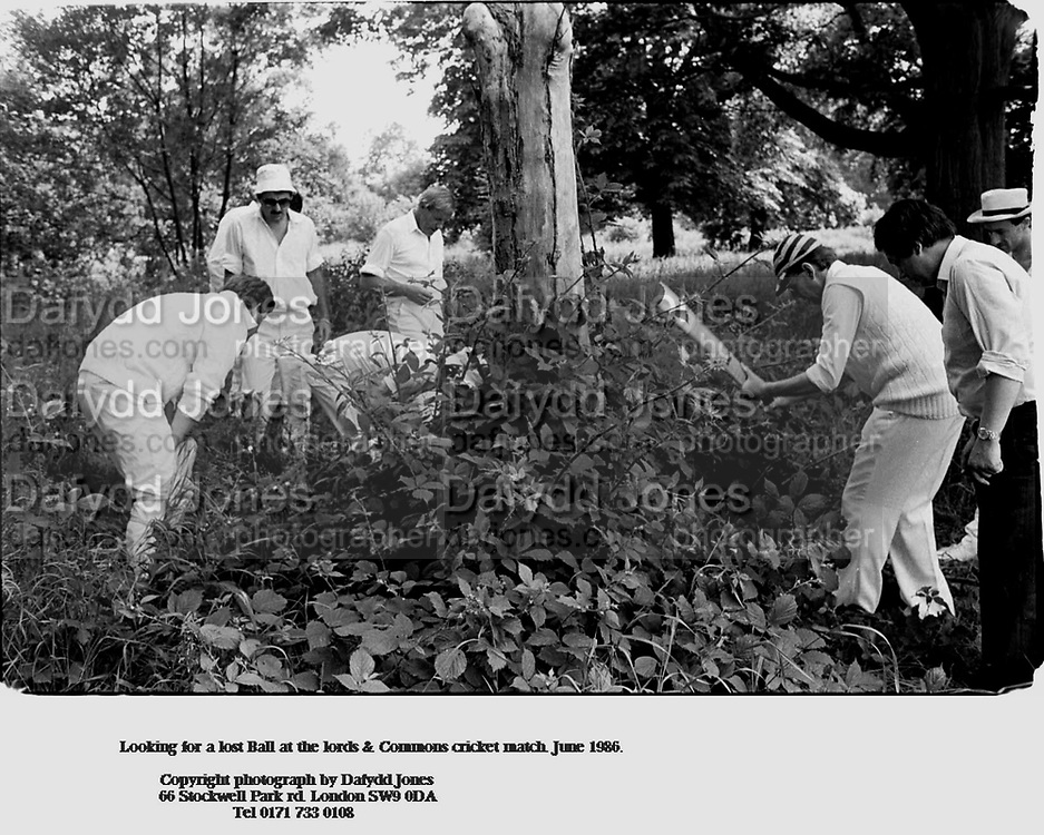 Looking for a lost Ball at the lords & Commons cricket match. June 1986.<br /><br />        Copyright photograph by Dafydd Jones<br />        66 Stockwell Park rd. London SW9 0DA<br />                       Tel 0171 733 0108