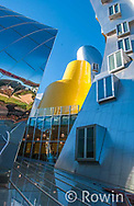MIT,  Ray and Maria Stata Center Building, Massachusetts Institute of Technology,  Building 32, architect Frank Gehry