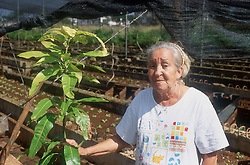 Elderly woman standing next to plant with beds of seedlings in background on organic farm or Organoponico in Cojimar; Havana; Cuba,