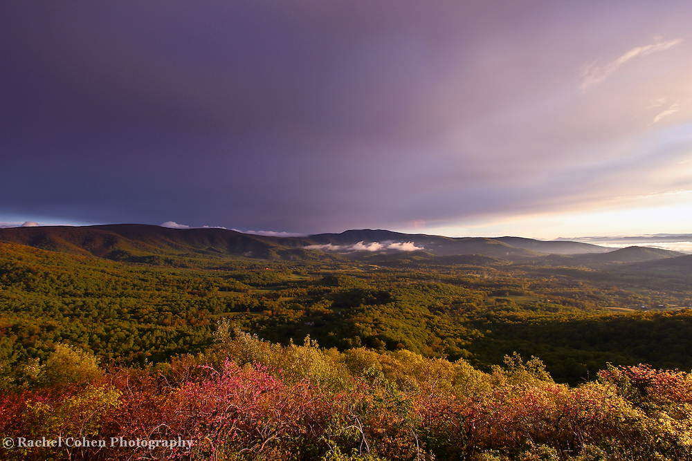 &quot;Dark Skies Leaving&quot;<br />