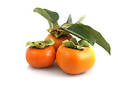 Organic persimmons in a group on white background
