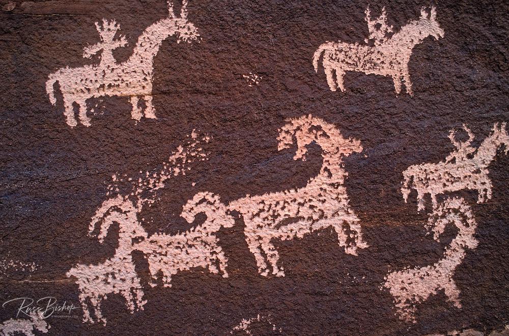 Petroglyphs near Wolfe Ranch, Arches National Park, Utah USA