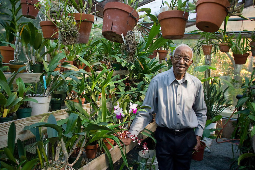 Duke University History Professor Emeritus John Hope Franklin tends to an orchid inside his Durham greenhouse filled with a wide variety of exotic orchids, including two strands named after him. Franklin recently won the 2006 John W. Kluge award for his lifetime achievements in the humanities and is author of the seminal book From Slavery to Freedom: A History of African-Americans, now in its seventh edition. Photo by DL Anderson..