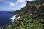 Coastline,  Pitcairn Island<br />