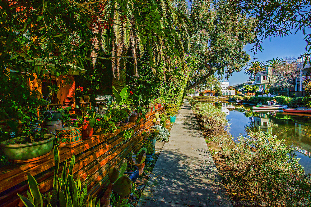 Residential Backyard, Venice Canals