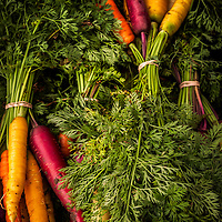 Purple, red, orange, yellow and  white heirloom carrots