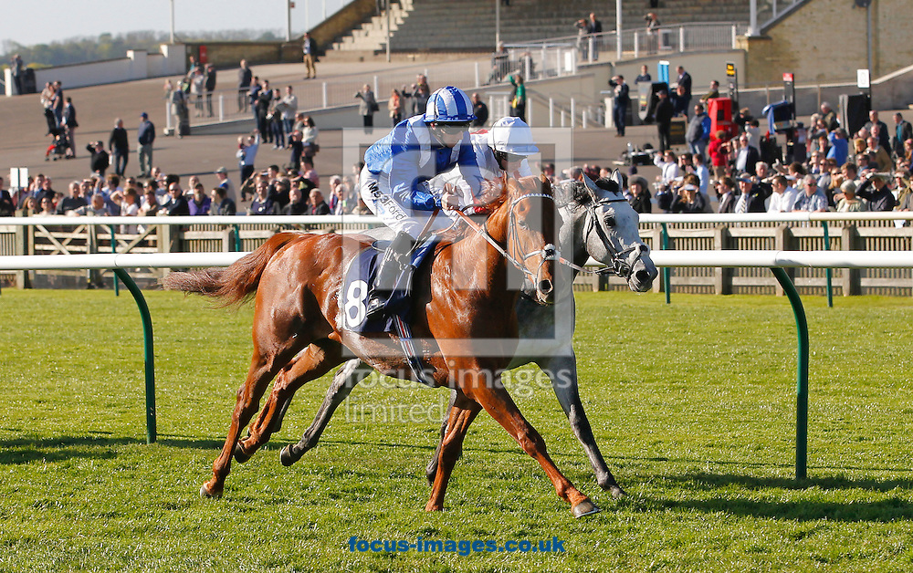 Picture by John Hoy/Focus Images Ltd +44 7516660607<br /> 16/04/2014<br /> Paul Hanagan riding Munjaz winning the NGK Spark Plugs EBF Stallions Maiden Stakes (Bobis Race) at Newmarket Rowley, Newmarket