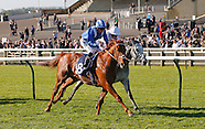 Newmarket Craven Meeting 160414