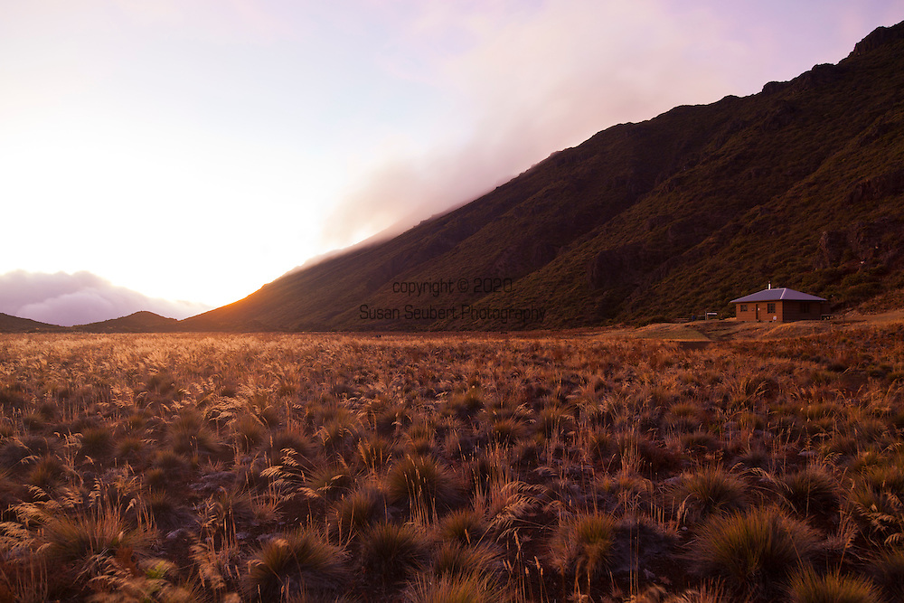 The Kapalaoa Cabin as the sun rises.  The area around this cabin has been the site for campers in Haleakala for many years.  There are several archeological sites near by.  Nene can be regularly spotted at this location in the park.  Volunteers here picked weeds to help maintain the endemism in the park. (everyone is asleep in the cabin at this point.)
