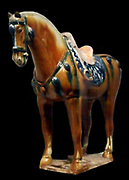 Saddled horse 8th century, Tang dynasty (618-907 AD). Ceramic, Terracotta Figure with three-color decorationfrom Henan in China