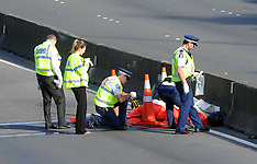 Wellington-Double fatal motorcycle accident on city motorway