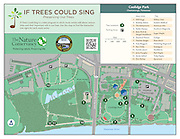 "Vector map illustration of Coolidge Park and Renaissance Park in Chattanooga, Tennessee. The map shows the points of interest, walking trails and access points. In addition, the map show the tree locations of the Nature Conservancy's ""If Tress Could Sing"" project."