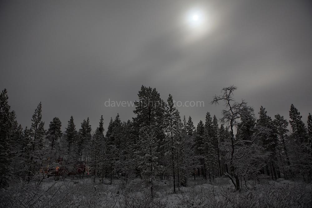 December moonlight pushes through snowclouds above Finland's boreal forest, 300km north of the Arctic Circle.  Lake Muddusjärvi, Inari, Finnish Lapland, 2011