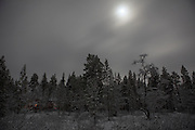 December moonlight pushes through snowclouds above Finland's boreal forest, 300km north of the Arctic Circle.  Lake Muddusjärvi, Inari, Finnish Lapland, 2011