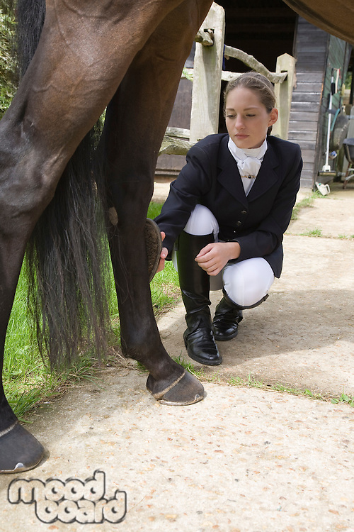 Girl grooming horse's leg outdoors