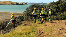Auckland-Vegetation fire Musick Point, Bucklands Beach