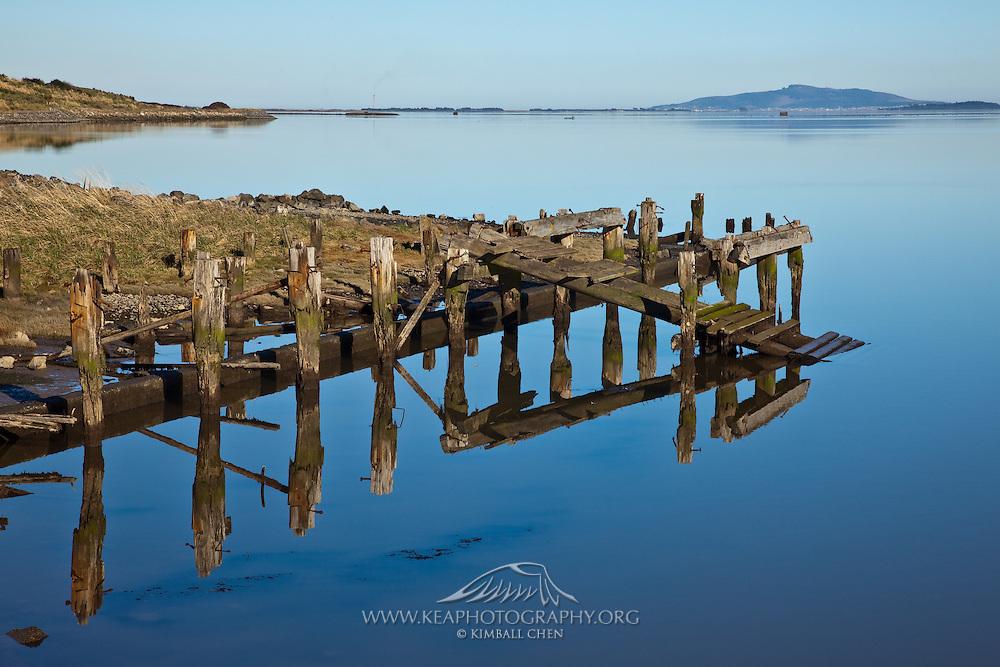 Invercargill Estuary, Southland, New Zealand