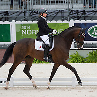 Para Dressage Team Test Grade III