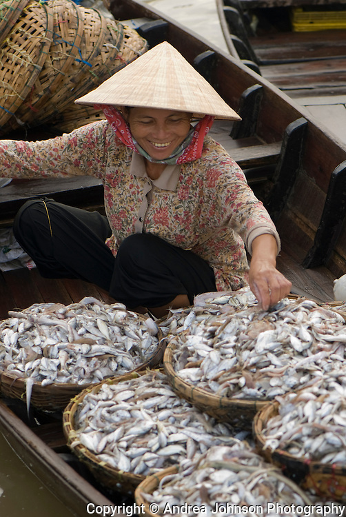 Fish for sale in Central Market, Hoi An, Cental Vietnam
