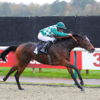 Lingfield 20th November