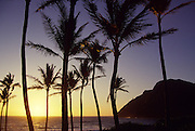 Sunrise, Makapu'u, Oahu, Hawaii, USA<br />