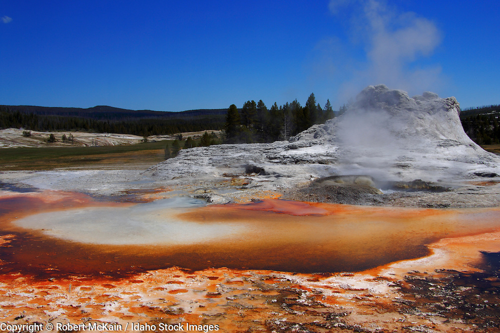 WYOMING. Yellowstone National Park. Castle Geyser in the Upper Geyser Basin.  May 2006 #ls060167