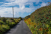 Country road near Cleggan, Connemara, Galway, Ireland