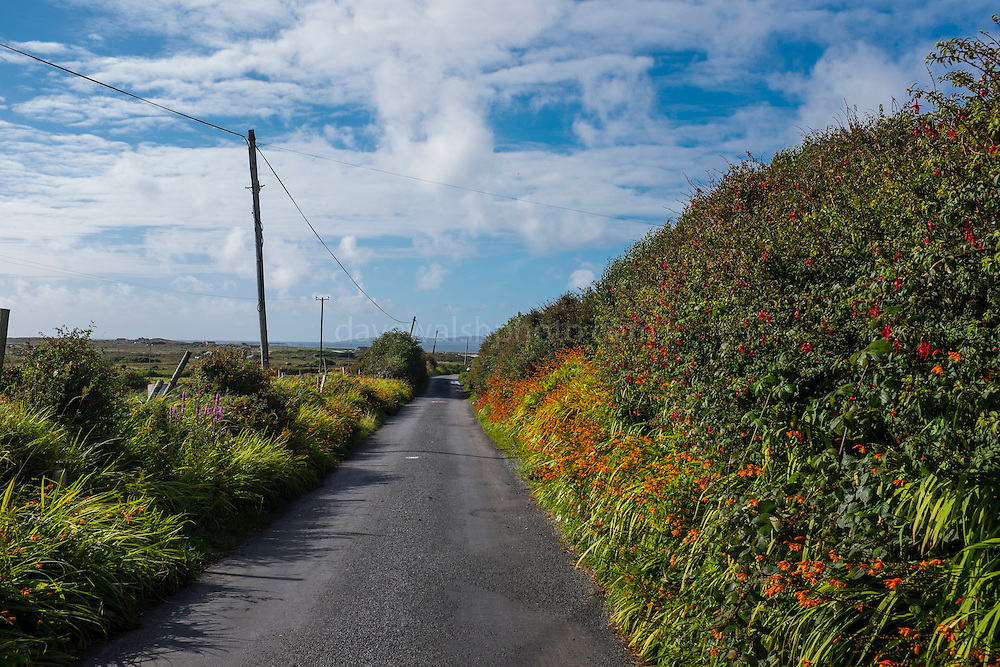 Country road near Cleggan, Connemara, Galway, Ireland