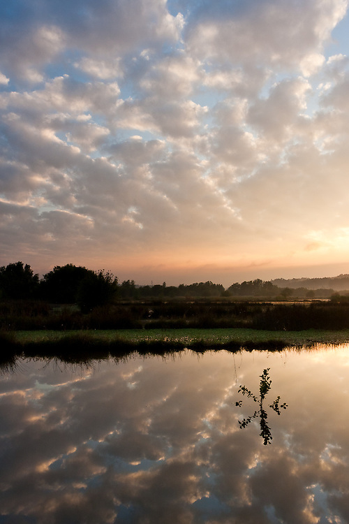 Patchy clouds are reflectd on the Vouga river canals in the north of Portugal