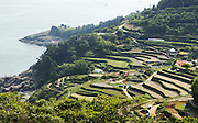 Daraengee village in Namhae island about 400 km south of Seoul May 22, 2015. Photo by Lee Jae-Won (SOUTH KOREA) www.leejaewonpix.com/