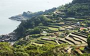 Daraengee village in Namhae island about 400 km south of Seoul May 22, 2015. Photo by Lee Jae-Won (SOUTH KOREA) www.leejaewonpix.com/