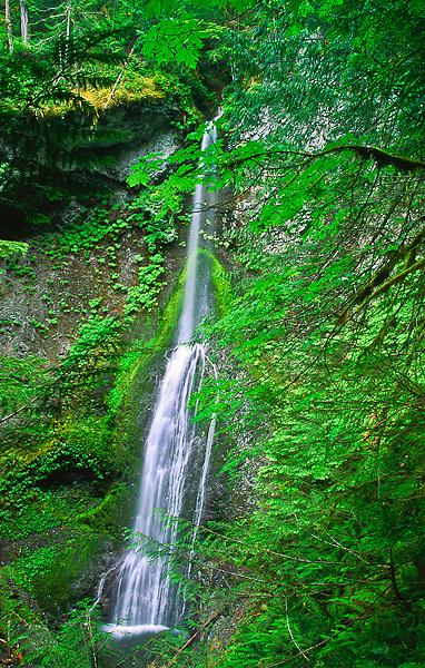 The 75 ft. Marymere Falls on Falls Creek.  Olympic National Park, Washington, USA.