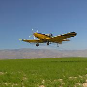 Crop duster spraying an alfalfa (Medicago sativa) field in Canyon County, Idaho