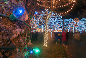 Christmas Tree Lighting 11/28/2014
