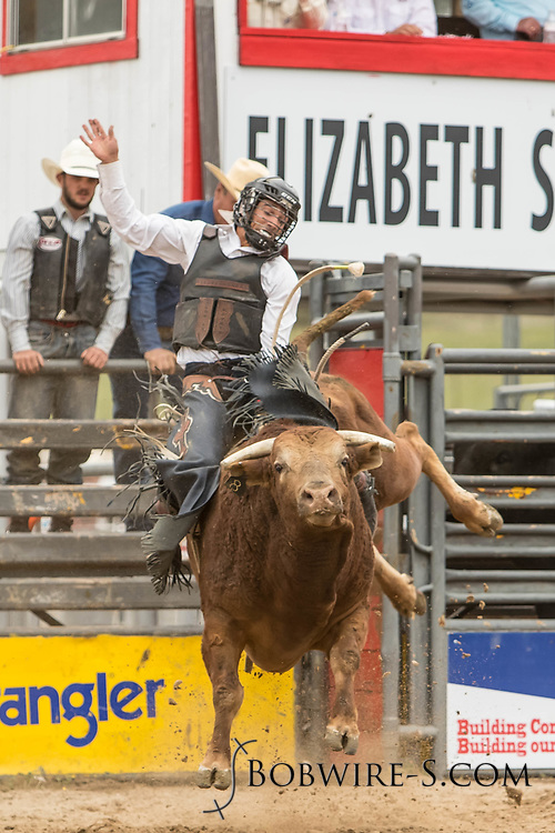 Bull rider Elijah Mora rides Summit Pro Rodeo's Circus Mouse during the third performance of the Elizabeth Stampede on Sunday, June 3, 2018.
