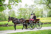 The Sunday Drive from the Big Bend Farm in Chadds Ford, Pa. to the Winterthur Point to Point Races, and back on Sunday 6 May 2018. Photograph by Jim Graham