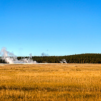 It is impossible when you get to this part of Yellowstone not to see the steam from the boiling water of the geysers and a bison or two grazing in the fields.  Such mixture is undoubtedly surreal and unique for that park.