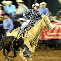 Justin Morgan ropes a calf during the team roping event at the 129th performance of the PRCA Silver Spurs Rodeo at the Silver Spurs Arena   on Friday, June 1, 2012 in Kissimmee, Florida. (AP Photo/Alex Menendez) Silver Spurs rodeo action in Kissimee, Florida. PRCA rodeo event in Florida. The 129th annual running of the cowboy event.