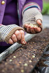 Seeds and Sowing