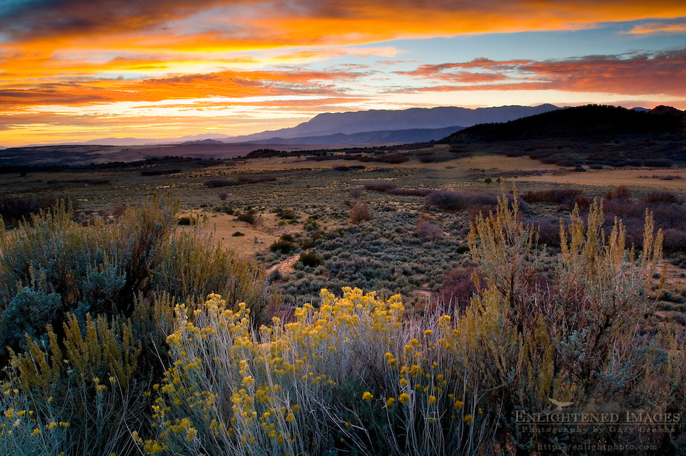 Sunset light over the high desert plateau along the Kolob Terrace, near Zion National Park, Utah