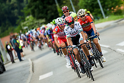 Peloton during 2nd Stage of 25th Tour de Slovenie 2018 cycling race between Maribor and Rogaska Slatina (152,7 km), on June 14, 2018 in  Slovenia. Photo by Vid Ponikvar / Sportida