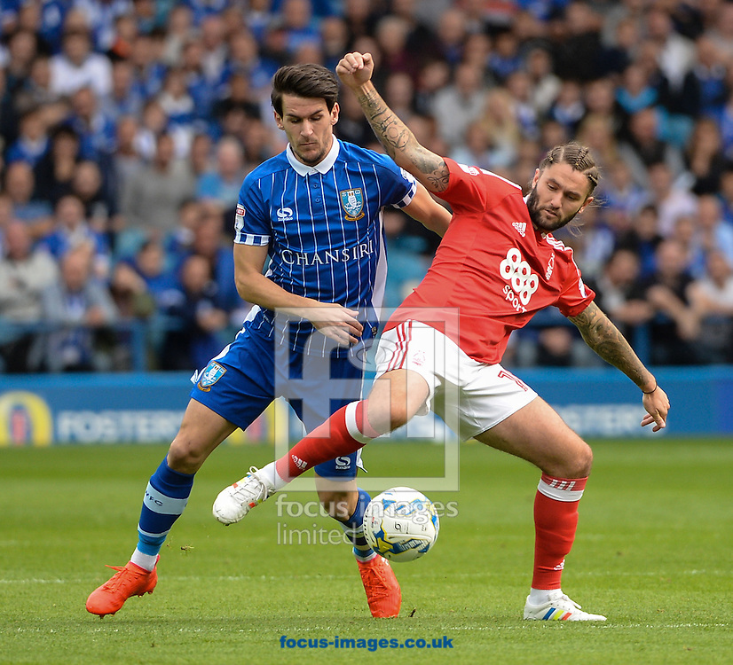 Kieran Lee of Sheffield Wednesday and Henri Lansbury of Nottingham Forest during the Sky Bet Championship match at Hillsborough, Sheffield<br /> Picture by Richard Land/Focus Images Ltd +44 7713 507003<br /> 24/09/2016