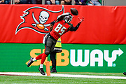 Tampa Bay Buccaneers Linebacker Devin White (45) catch the ball in bounds during the International Series match between Tampa Bay Buccaneers and Carolina Panthers at Tottenham Hotspur Stadium, London, United Kingdom on 13 October 2019.