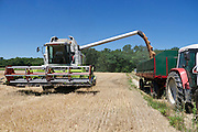 Wheat harvest near Marchtrenk, Austria.