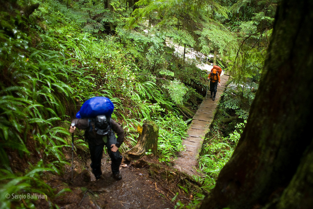 West Coast Trail - Day 7.  Trekkers climb up a muddy section after crossing a flooded creek.